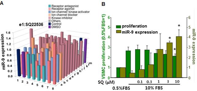Screening of miR-9 inducing small molecules.