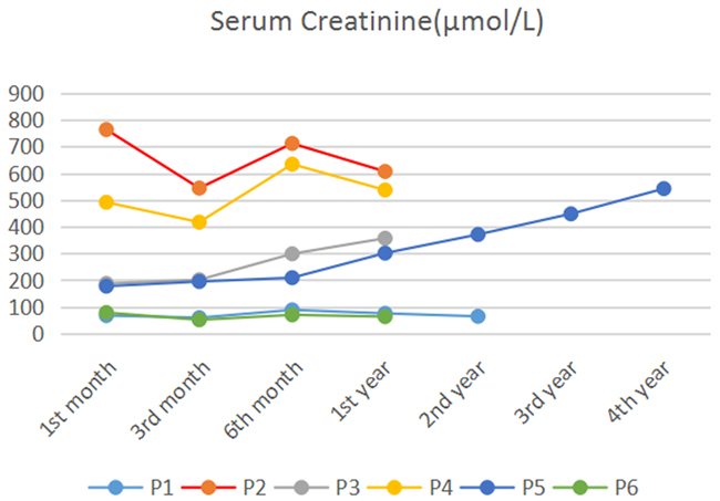 Postoperative serum creatinine levels in TEVAR patients during follow-up period Patient 2 (red) and patient 4 (yellow) had high levels of serum creatinine during the follow-up period, and they needed renal replacement therapy all the time.