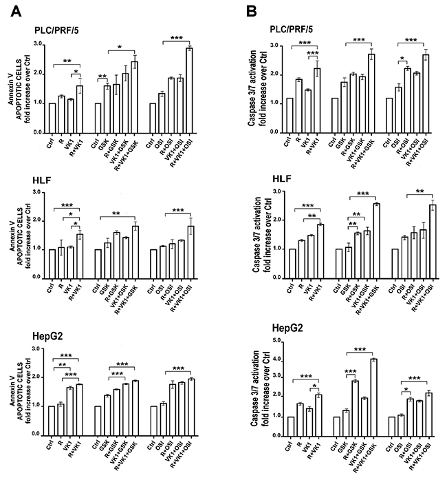 GSK1838705A and OSI-906 potentiate the pro-apoptotic effects of Regorafenib and/or VK1 in HCC cell lines.