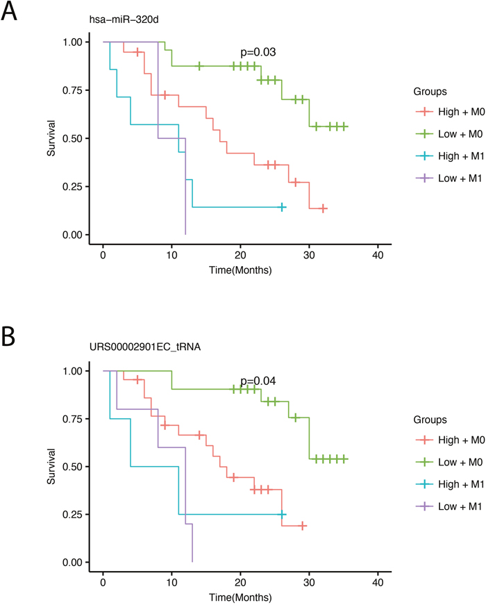 Survival plots showing overall survival with respect to expression adjusted for the presence of metastasis.