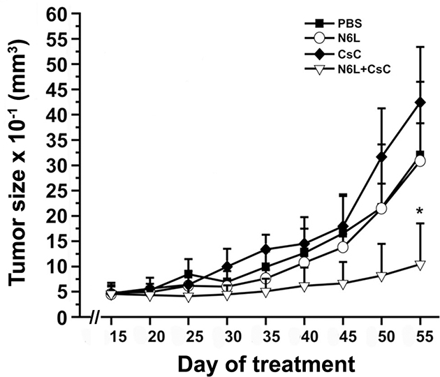 N6L polyplexes inhibit tumour growth of N6L-resistant tumours.
