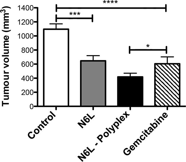 N6L polyplexes reduce PDAC tumour growth.