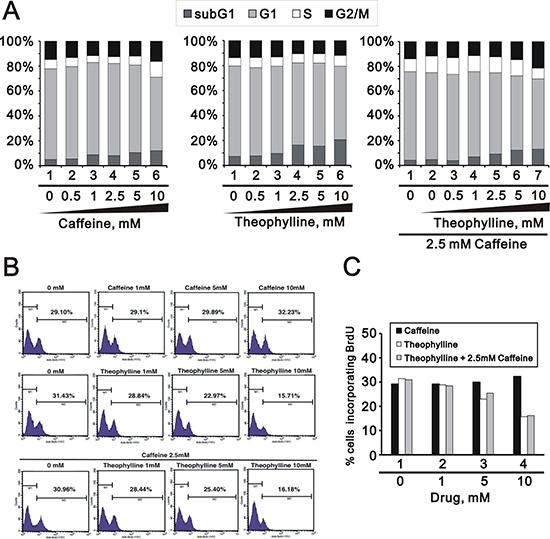 Theophylline suppressed cellular proliferation.