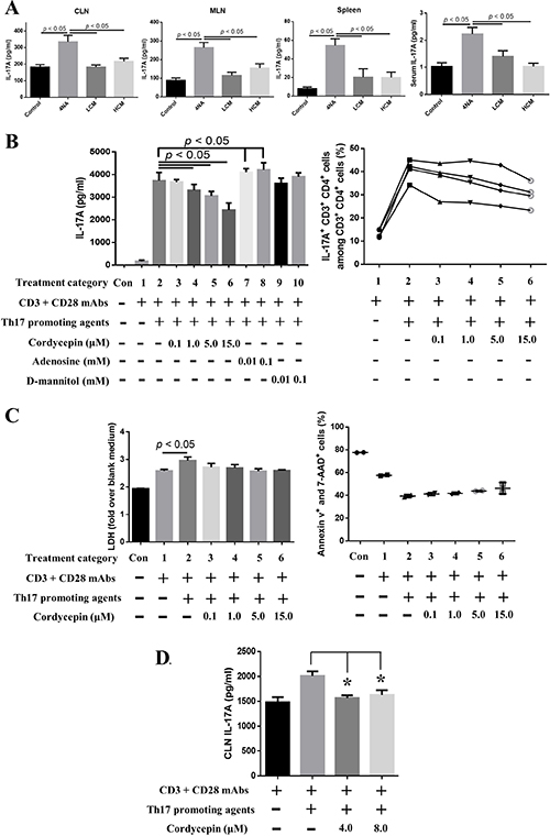 Both CMP and cordycepin inhibited the production of IL-17A.