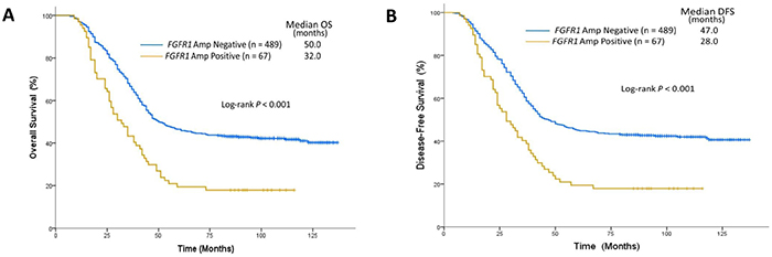 Survival analysis on the basis of FGFR1 amplification status.