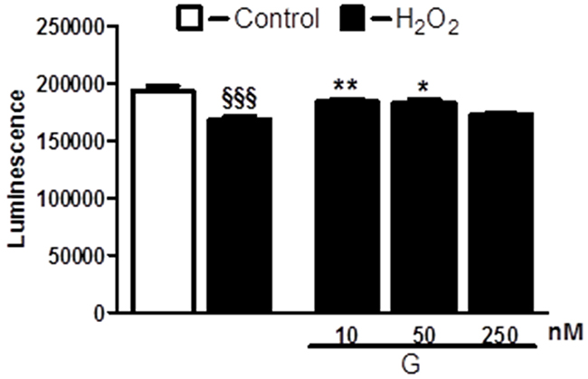 Dose-dependent effect of G on cell viability in response to oxidative stress.