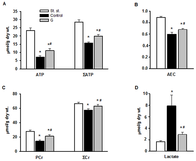 Effect of G infusion on energy state of isolated rat heart at the end of reperfusion.