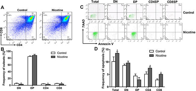 Effects of prenatal nicotine exposure on the thymocyte phenotypes and apoptosis frequency in the fetus on GD 18.