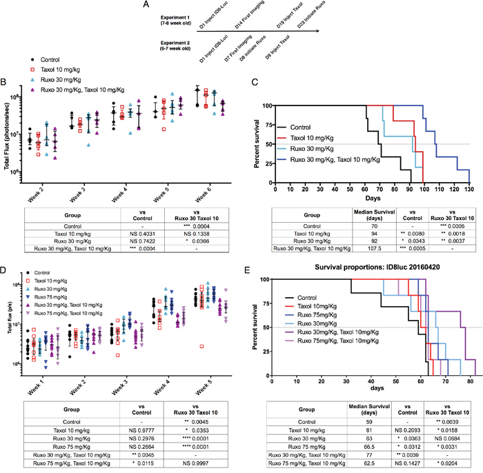 Impact of Ruxo and Taxol combination therapy on tumor growth and survival Mice were injected intraperitoneally with ID8-Luc cells.