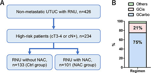 Patient selection and classification.