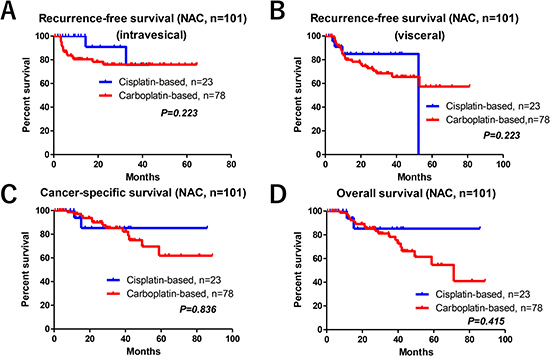 Oncological outcomes between the GCis and GCarbo NAC regimens.