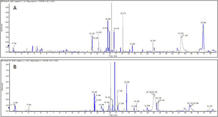 Typical base peak chromatograms (BPC) of serum sample.