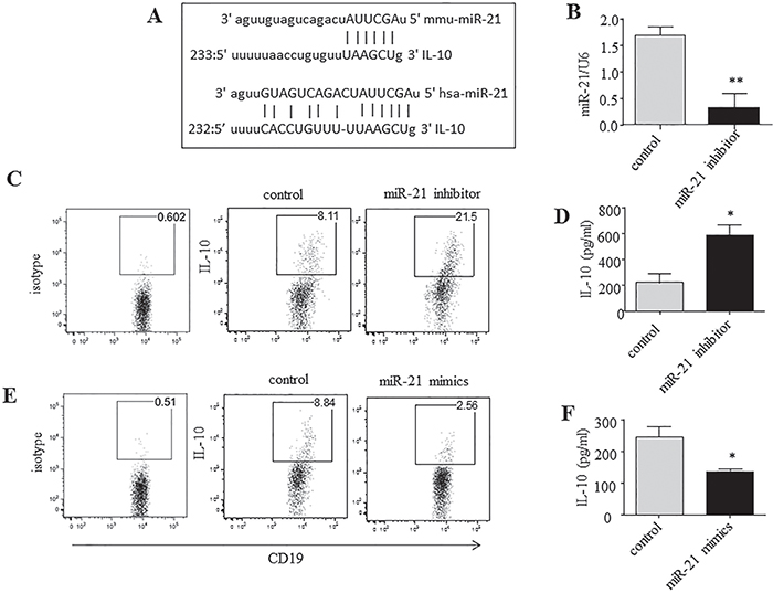miR-21 acts as a potent negative regulator of IL-10-producing B cells.