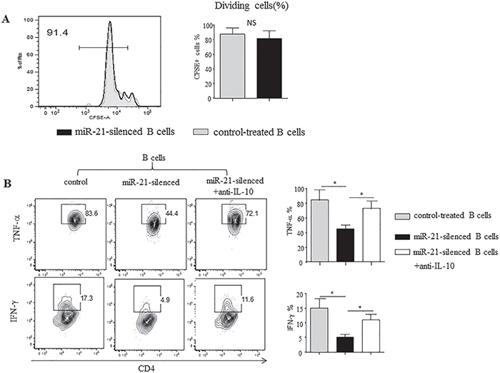 Silencing of miR-21 in B cells alters T cell cytokine profiles.