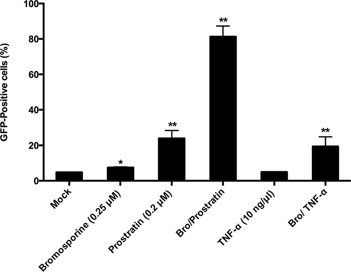 Synergistic reactivation of HIV-1 promoter by bromosporine and prostratin, TNF-α in latently infected cells.