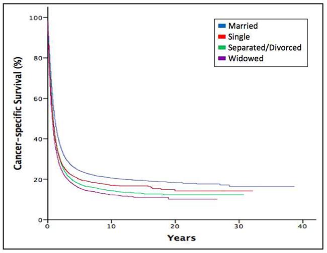 Kaplan-Meier estimates for cancer-specific survival according to marital status.