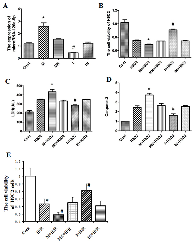 The role of microRNA-126a-5p in H9C2 cells injury mediated by H2O2 or H/R.