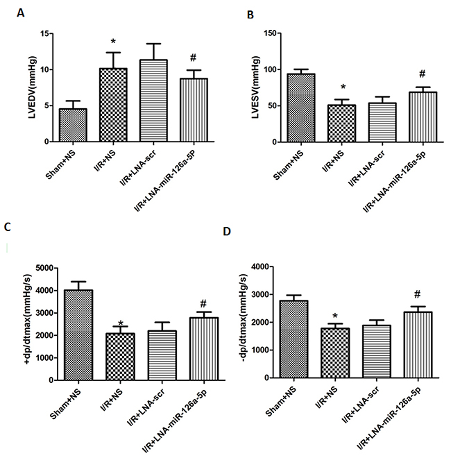 Effect of microRNA-126a-5p ablation on cardiac haemodynamic measurement.
