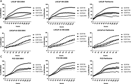 Usp12 depletion sensitises PC cells to Akt inhibition irrespectively of their castration sensitivity and AR status indicated by decreased cellular occupation of the wells.