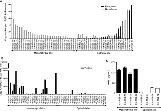 Classification of a panel of melanoma cells lines based on gene expression.