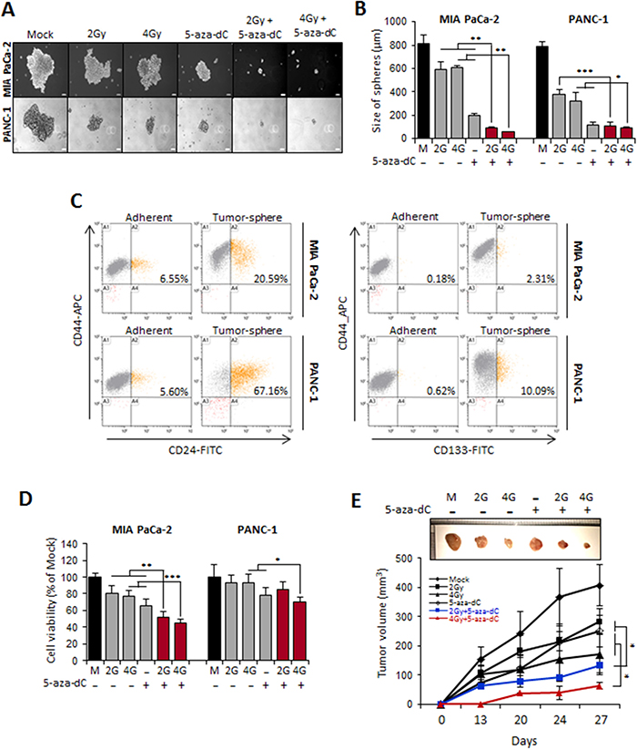 Combination treatment of 5-aza-dC with IR inhibited stem-like properties of pancreatic sphere cells.