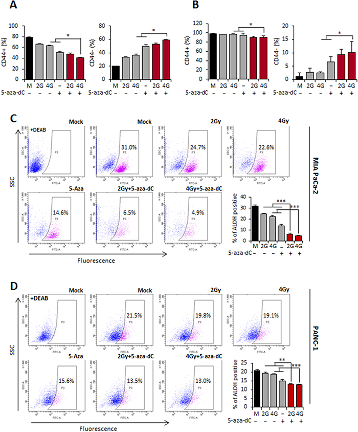 Combination treatment with 5-aza-dC and IR can deplete pancreatic CSCs.
