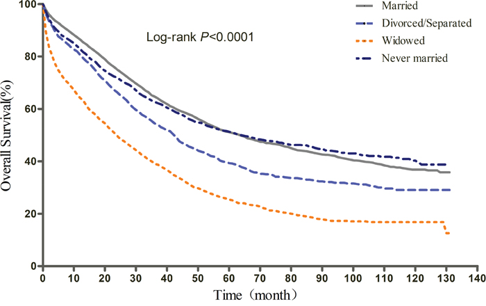Kaplan-Meier curves of the effect of marital status on overall survival (OS).