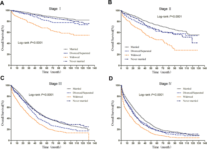 Kaplan-Meier curves of the effect of marital status on OS for all patients stratified by stage.