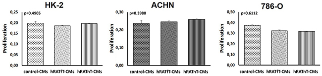 Effect of CMs from hRATnT and hRATfT on proliferation of HK-2, ACHN and 786-O cell lines.