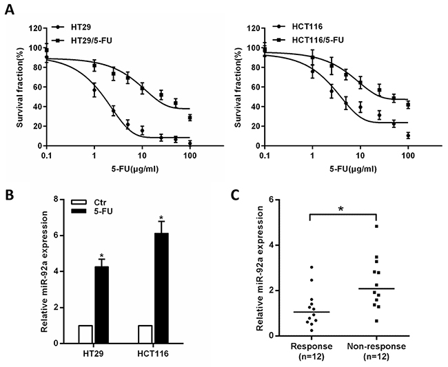 Expression of miR-92a correlates with CRC chemoresistance.