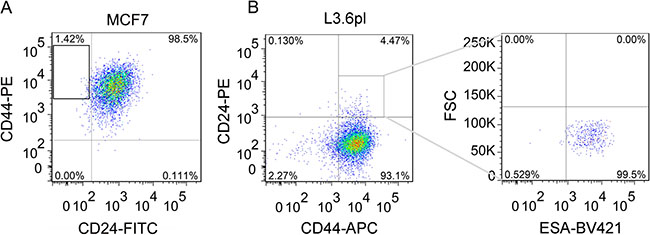 Isolation of breast CD44+CD24- CSCs and pancreatic CD44+CD24+ESA+ CSCs from MCF7 and L3.6pl cells by flow cytometry.
