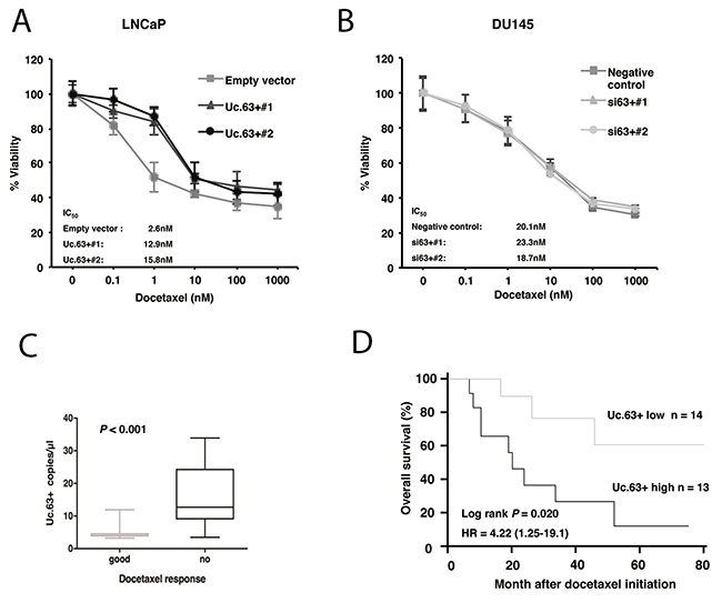 Effect of Uc.63+ on docetaxel sensitivity in prostate cancer (PC) cell lines and on clinical outcome.