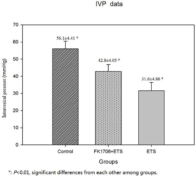 Postoperative IVP measurement.