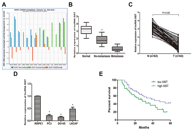 LncRNA XIST is low expressed in prostate cancer tissues and cell lines.