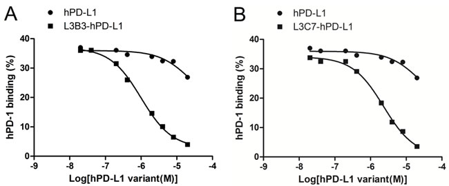 The competition hPD-1 binding assays of hPD-L1, L3B3-