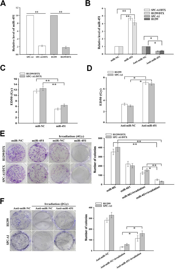 Effect of miR-451 expression on