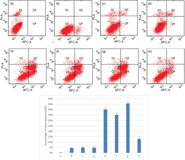 Double staining and flow cytometry analysis of cell apoptosis.