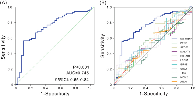 ROC analysis of sensitivity and specificity.