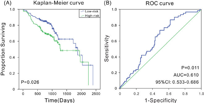 Kaplan-Meier and ROC analyses for the overall survival of patients from GSE65858.