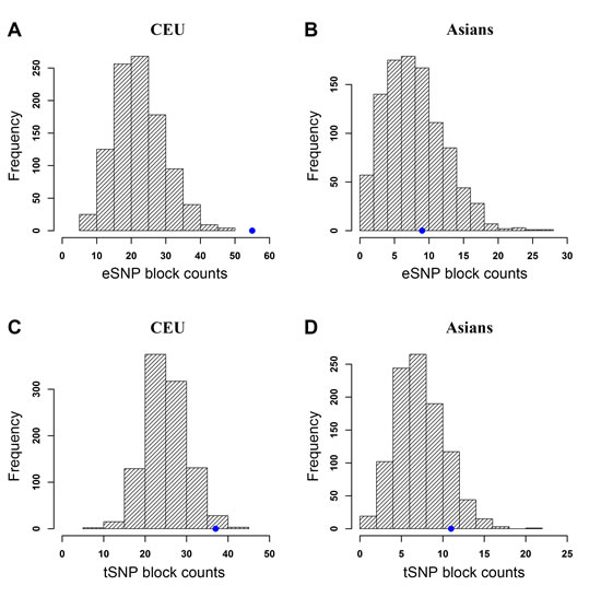 Enrichment analysis of cancer-associated SNPs with