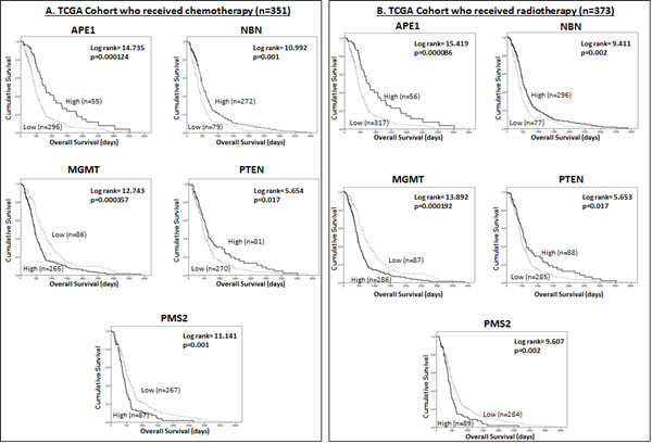 Kaplan Meier survival curves for overall survival in the TCGA dataset for glioblastoma patients treated with chemotherapy (A) and radiotherapy (B) stratified by mRNA expression of