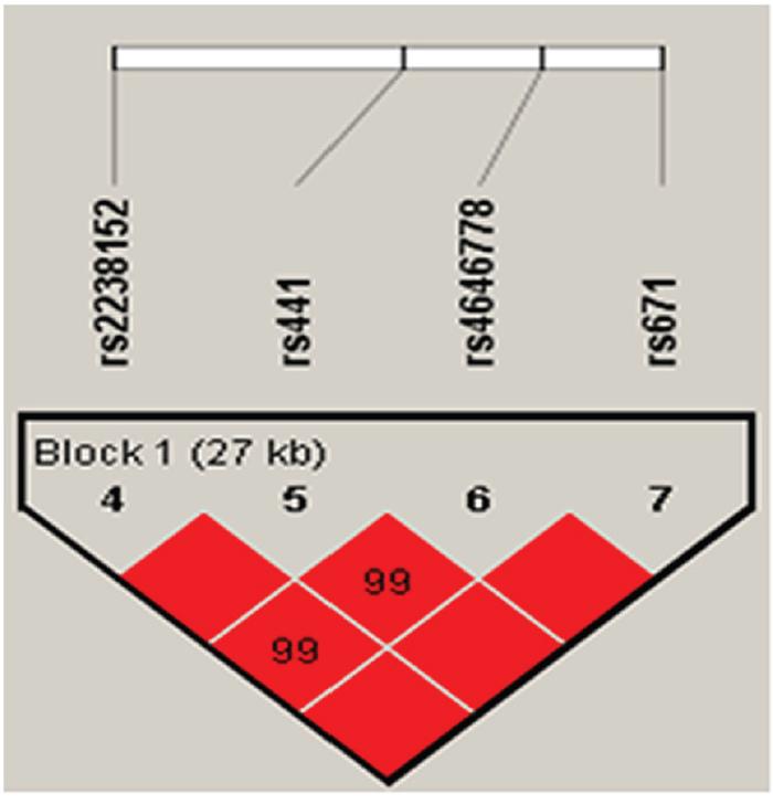 Linkage disequilibrium of polymorphic sites in the ALDH2 gene.