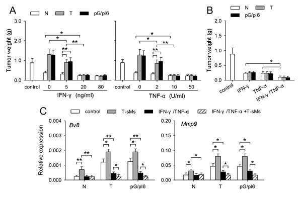 IFN-γ and TNF-α reverse the effect of protumor neutrophils on tumor growth.