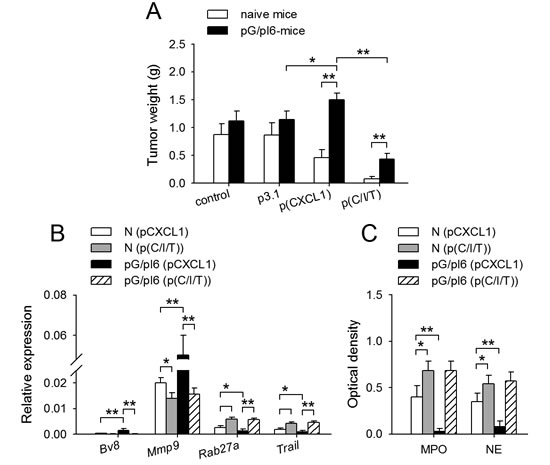 Neutrophil function could be remodeled in vivo by IFN-γ and TNF-α.