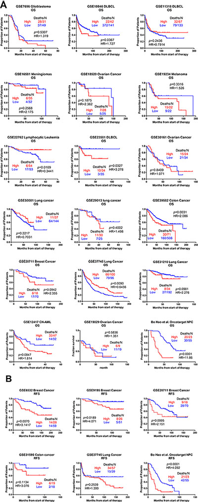 Kaplan-Meier curves relating AFAP1-AS1 expression to OS/RFS in different cancers.