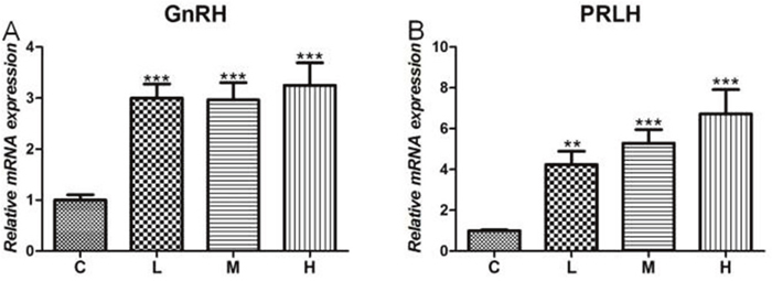 Effects of 4-NP exposure expression of GnRH and PRLH in the hypothalamus.