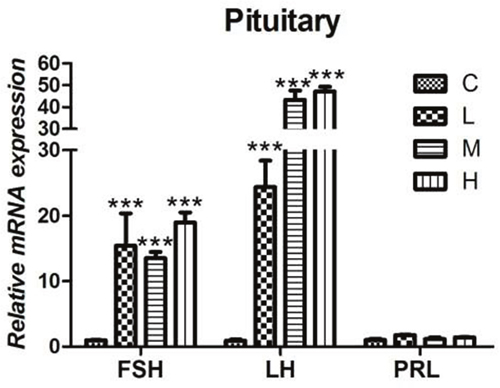 Effects of 4-NP exposure expression of gonadotropins in the pituitary gland.