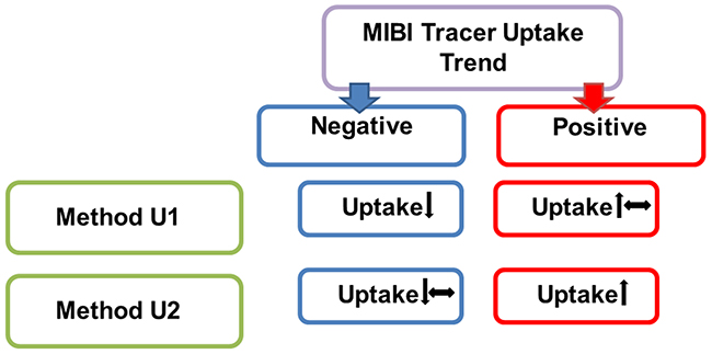 The different methods for the interpretation of tracer uptake trend of [99mTc]Tc-Sestamibi (MIBI) scintigraphy in late images, compared to early images.