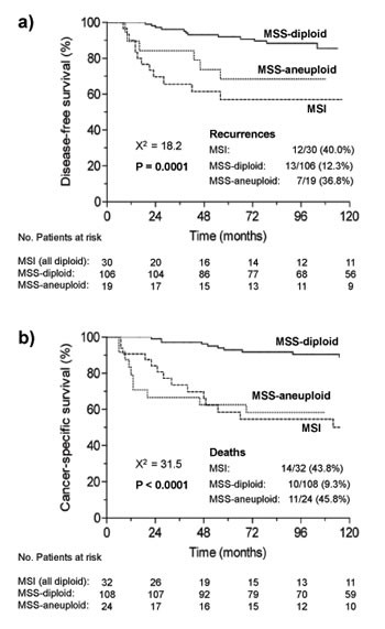 Kaplan-Meier curves for a) disease free survival and b) cancer-specific survival of the three categories of tumors defined by microsatellite instability and ploidy status in the whole series.