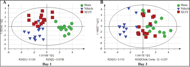Effects of XFZY on abnormal metabolic profile of rats post-CCI on day 1, 3.